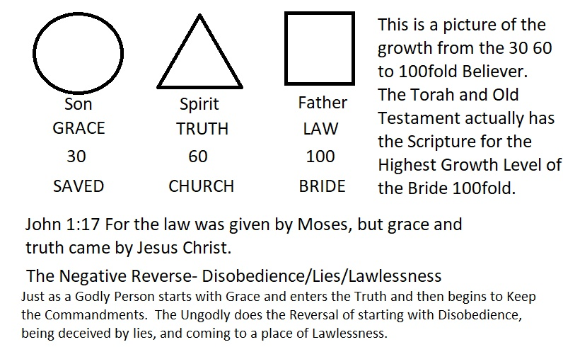 Grace Truth Law