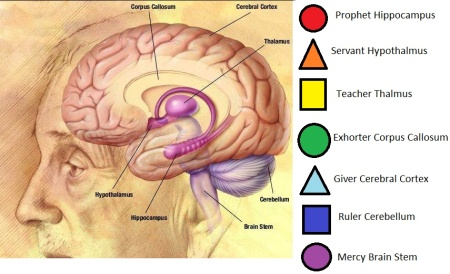 Redemptive Gifts of the Brain